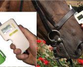 Elektroniczne urządzenie do oceny nacisku nachrapnika – czy zmieni rzeczywistość koni?