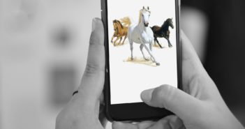 Konie smartfon