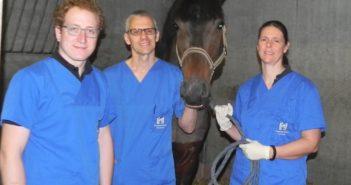 Nowe możliwości leczenia arytmii serca u koni